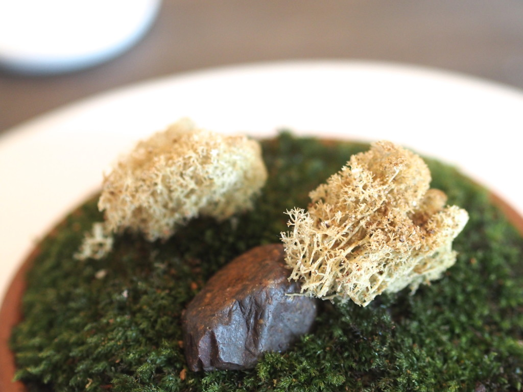 Fried reindeer moss